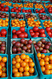 Cherry and grape tomatoes Stock Photos