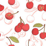 Cherry graphic berry red color seamless pattern sketch illustration Stock Images