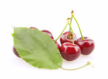 Cherry with green leaf Stock Photography