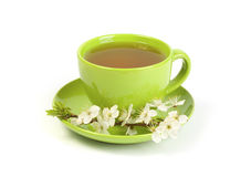 Cherry green tea in a mug Stock Images