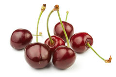 Cherry group Royalty Free Stock Images