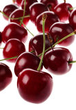 Cherry group Stock Photography