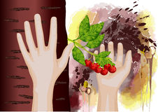 Cherry in hand Stock Images