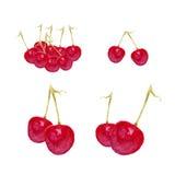 Cherry hand drawn Royalty Free Stock Photos