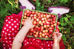 Cherry and hands. Royalty Free Stock Photos