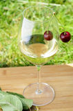 Cherry and wine. Cherry hangs on a wine glas in summer in garden Stock Photography