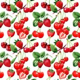Cherry wild fruit pattern in a watercolor style. Royalty Free Stock Image