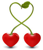 Cherry heart Stock Image