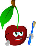 Cherry holding tooth brush Stock Images