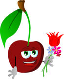 Cherry holding tulip and other flowers Royalty Free Stock Photography