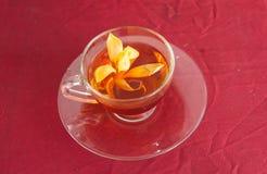 Cherry hot herbal tea. Royalty Free Stock Photo