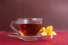 Cherry hot herbal tea. Stock Images