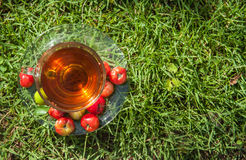 Cherry hot herbal tea. Stock Photography
