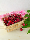 Cherry i en korg Arkivfoton