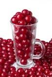 Cherry i ett exponeringsglas Royaltyfri Foto