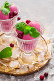 Cherry ice cream, mint leaves, berries and ice Royalty Free Stock Photo