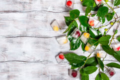 Cherry in ice cube with branch Stock Photography