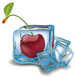 Cherry in ice cube Royalty Free Stock Images
