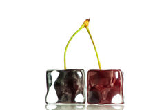Cherry in the ice cubes Stock Image