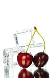 Cherry and ice cubes Stock Image