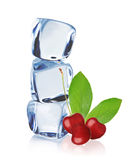 Cherry with Ice cubes Stock Photography