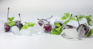 Cherry in ice cubes Stock Photos