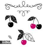 Cherry icon Stock Image