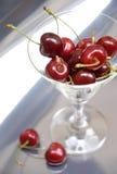 Cherry iii royaltyfri bild