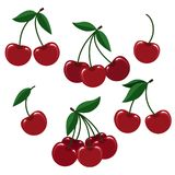 Cherry berry set for logo. Cherry illustration. Vector cherries or fresh cherise berry set for logo isolated on white background Stock Photography