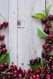 Cherry inramniner red Royaltyfria Foton