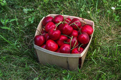 Cherry inside wooden  basket Stock Photo