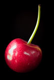 Cherry isolated on black Royalty Free Stock Images