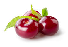 Cherry isolated on white stock images
