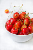 Cherry isolated on white background. Agriculture. Close-up. Top view Stock Photos