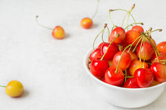 Cherry isolated on white background. Agriculture. Close-up. Top view Stock Image