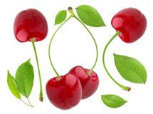 Cherry isolated on white background. Cherries collection. Cherries collection. Cherry isolated on white background Royalty Free Stock Photography
