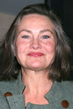 Cherry Jones Royalty Free Stock Image