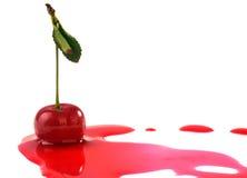 Cherry in juice Royalty Free Stock Photo