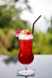 Cherry Juice Royaltyfri Bild