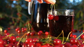 Cherry juice on the background of growing cherries. Slow motion. The smooth glide of the camera  from right to left  along the table with a cherries and juice stock video footage