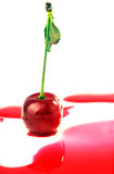 Cherry in juice isolated on white Stock Image