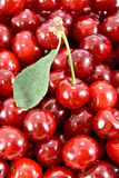 Cherry with leaf and heap of fruits. Cherry fruit with leaf is lie on the heap of fruits Royalty Free Stock Images