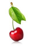 Cherry with leaf Stock Photo