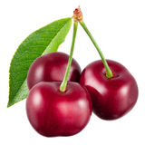 Cherry with leaf isolated on white background stock image