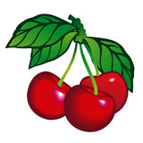 Cherry with Leafs Stock Images