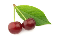 Cherry with leaves Stock Photos