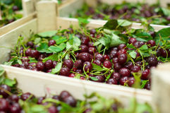 Cherry with leaves in wood boxes in supermarket Stock Photos