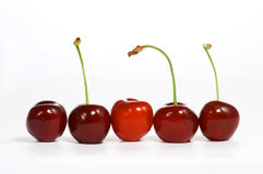 Cherry in line Stock Photo