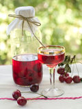 Cherry liqour Stock Images