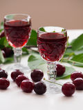 Cherry liqueur and sour cherries Royalty Free Stock Photo
